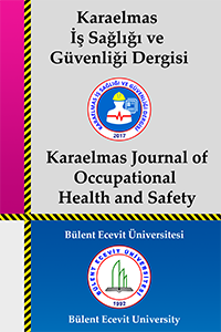 Karaelmas İş Sağlığı ve Güvenliği Dergisi
